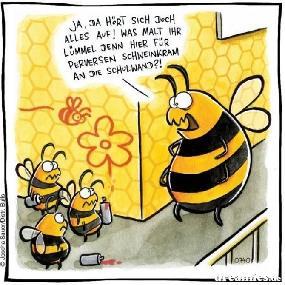 Lustige Bienen Bilder